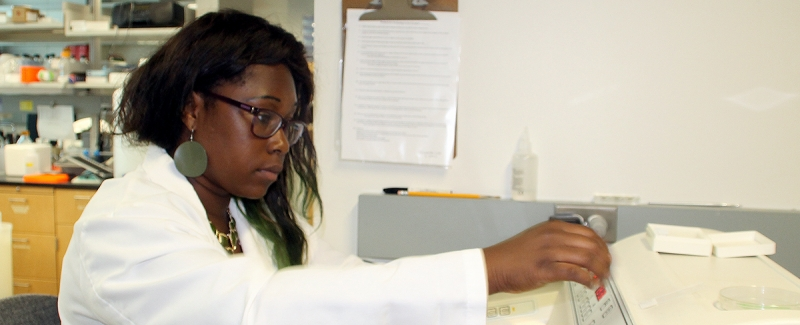 Bisola Omoba performing undergraduate research.