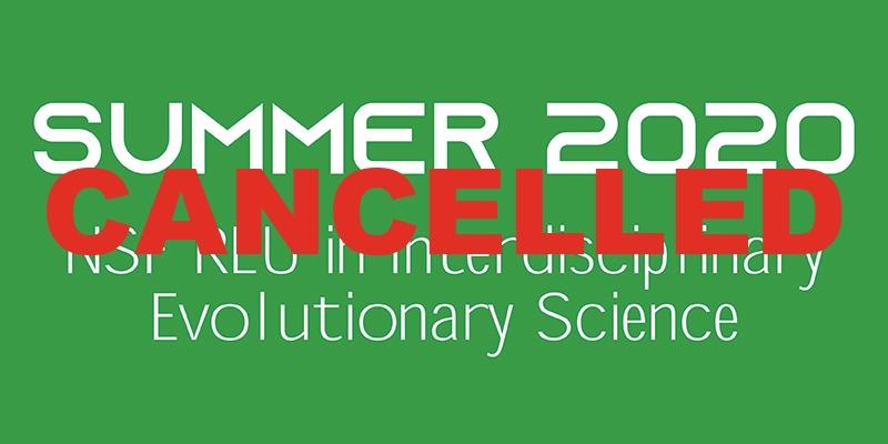 Summer 2020 REU Cancelled