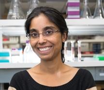 Veena Prahlad
